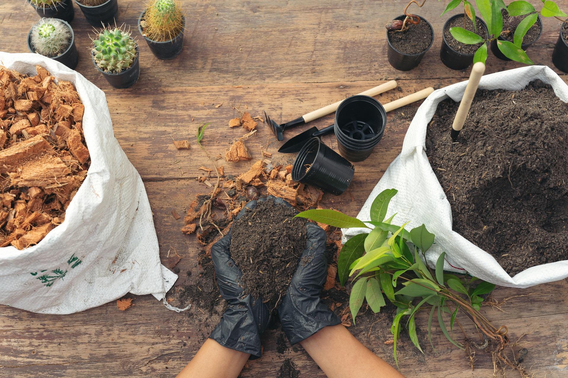 Projetos transdisciplinares na Cultura Maker